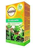 Solabiol - Enraizante líquido 100% orgánico para esquejes...