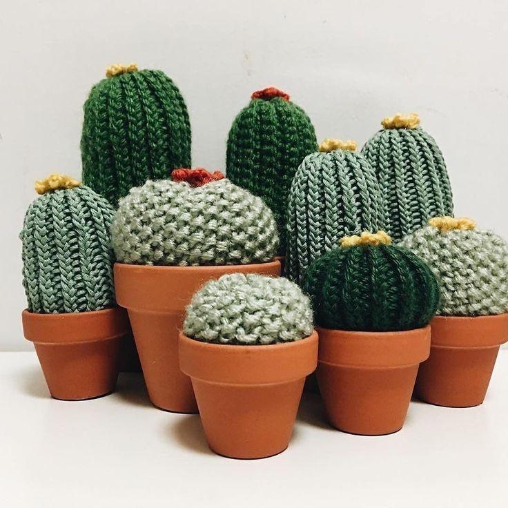 comprar cactus crochet precios