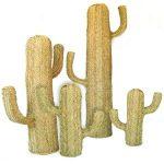Cactus Esparto decoracion